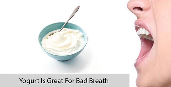 Yogurt Is Great For Bad Breath